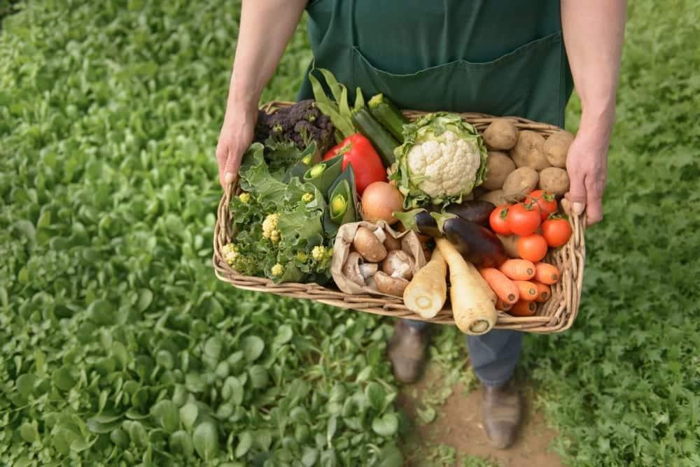 TESK Başkanı Palandöken: Tohum, fide ve baharat satan esnafımız da hafta sonu açık olmalı