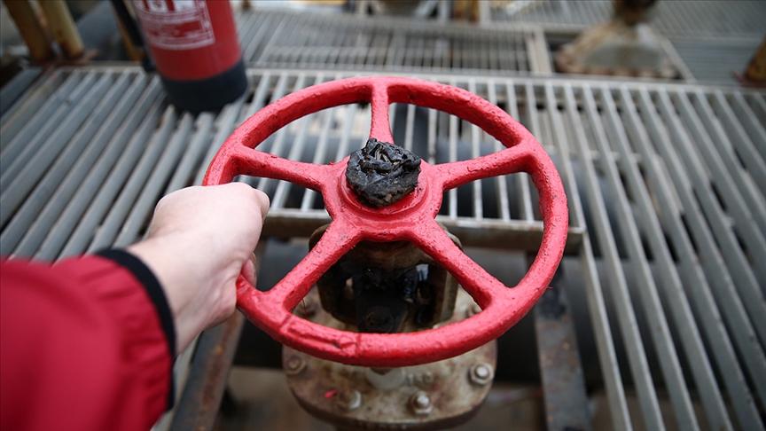 Doğal gaz ithalatı yıllık yüzde 15,6 arttı