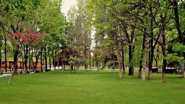 Atatürk Orman Çiftliği'nin bazı taşınmazları kiralanacak