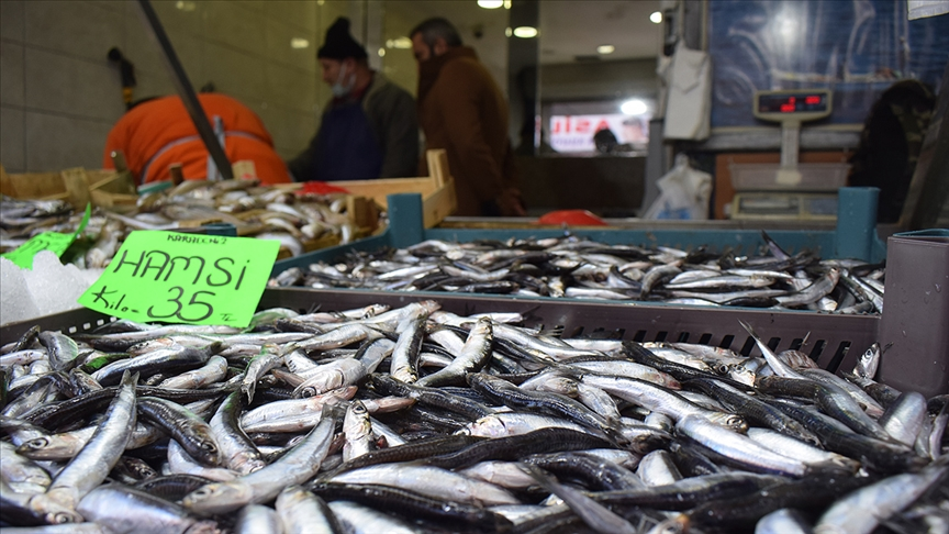 Kar ve fırtına Düzce'de hamsi fiyatını artırdı