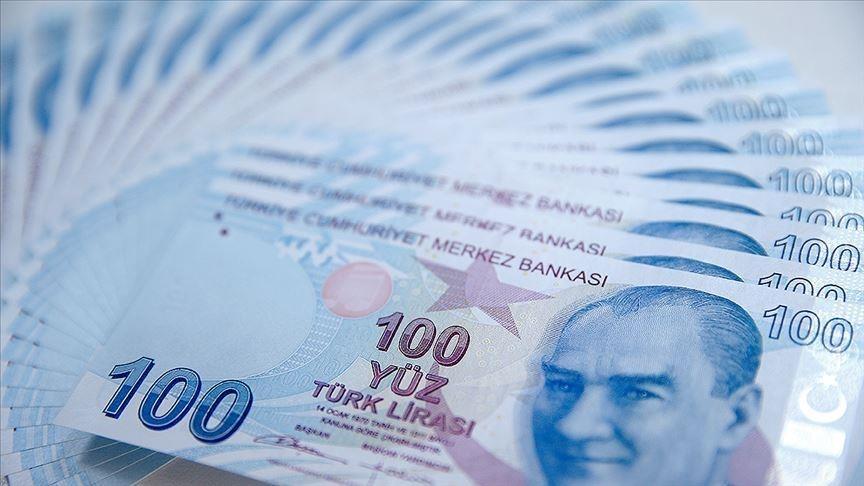 2020'de 69,3 milyar lira sosyal yardım gerçekleşti