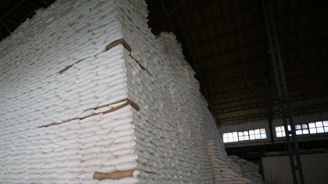Türkşeker'den 30 milyon dolarlık şeker ihracatı