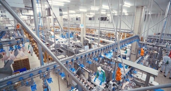 Lezita'nın piliç eti ve sakatat ihracatı yüzde 74 arttı