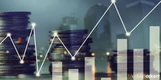 Yatırım fonu istatistikleri
