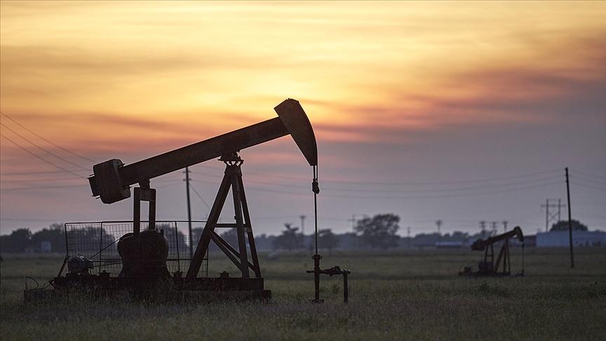 OPEC: Petrol 2045'e kadar küresel enerji portföyünde en büyük paya sahip olmaya devam edecek