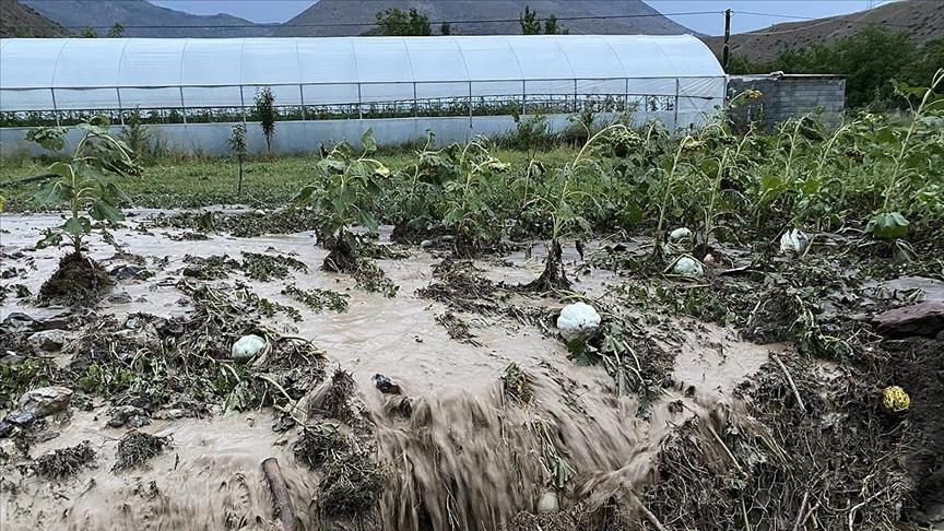 Tarım sigortaları yaşanabilecek mağduriyetlerin azaltılmasını sağlıyor