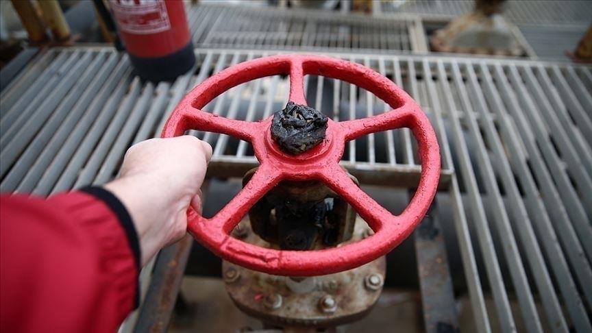 Gazprom, TürkAkım üzerinden gaz sevkiyatına başladı