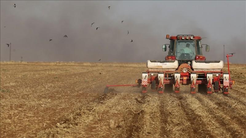 Tarımsal girdi fiyat endeksi ağustosta yıllık yüzde 28,74, aylık yüzde 0,93 arttı