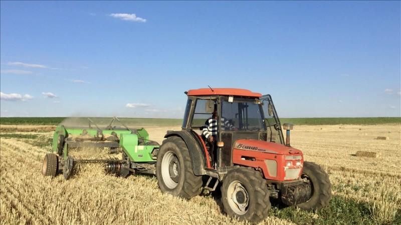 Tahıl, sebzede üretimin azalacağı, meyvede artacağı tahmin edildi
