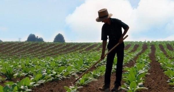 Çiftçilere verilen destek tutarı artırıldı