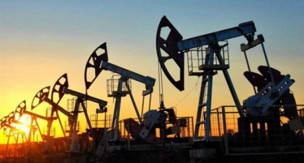 ABD'deki petrol sondaj kulesi sayısı artarken WTI fiyatı geriledi