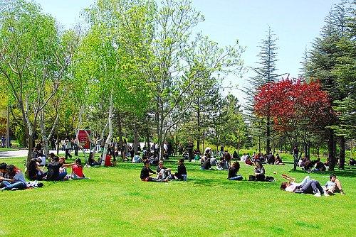 Kocaeli ve Sakarya üniversitelerinden yüz yüze eğitim kararları