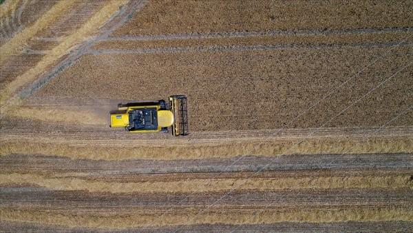 Ocakta tarım, gıda ve içecek sektörünün ihracatı arttı