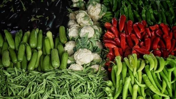 Türkiye'nin yaş meyve sebze ihracatı ilk çeyrekte artış gösterdi