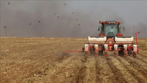 Tarımsal fiyat endeksi ağustosta yüzde 28,74, aylık yüzde 0,93 arttı