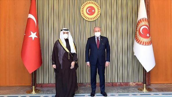 Şentop: Türkiye olarak diyaloğa ön şartsız olarak hazırız